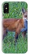 Red Fox In A Field IPhone Case