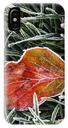 Red Frosty Leaf On Frozen Ground IPhone Case