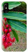 Red Ginger Chandelier IPhone Case