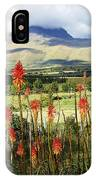 Red Hot Pokers Of The Andes IPhone Case