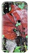 Red Leaf On Green IPhone Case