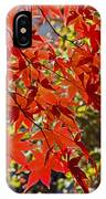 Red Leaves 1 IPhone Case