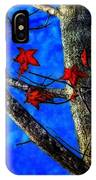 Red Leaves Blue Sky In Autumn IPhone Case