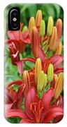Red Lillie IPhone Case