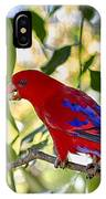 Red Lory IPhone Case
