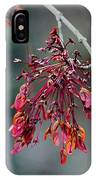 Red Maple Flowers IPhone Case