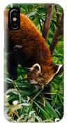 Red Panda Tree Climb IPhone Case