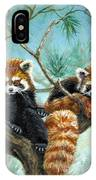 Red Pandas IPhone Case