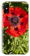 Red Poppy And Bee IPhone Case