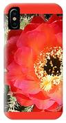 Red Prickly Pear Blossom IPhone Case