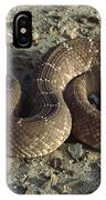 Red Rattlesnake Baja California Mexico IPhone Case