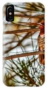 Red Rock Country Hummingbird IPhone Case