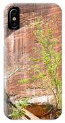 Red Rock With Waterfall IPhone Case