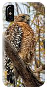 Red-shouldered Hawk In A Willow Tree IPhone Case