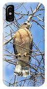 Red Shouldered Hawk In Tree IPhone Case