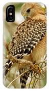 Red Shouldered Hawk IPhone Case