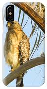 Red-shouldered Hawk On The Palm Tree IPhone Case