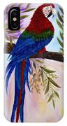 Red Tail Macaw IPhone Case