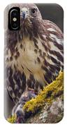 Red Tailed Hawk - Breakfast Close Up IPhone Case