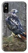 Red Tailed Hawk Perched On A Rock IPhone Case