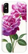 Red Violet Roses With Bud On White IPhone Case