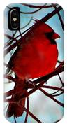 Red White And Blue Cardinal IPhone Case
