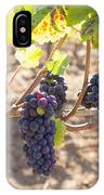 Red Wine Grapes Hanging On Grapevines IPhone Case