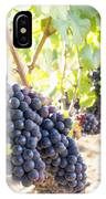 Red Wine Grapes Hanging On Grapevines Vertical IPhone Case