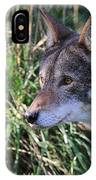 Red Wolf On The Hunt IPhone Case