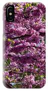Redbud Tree In Blossom IPhone Case