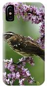 Redbud With Grosbeak IPhone Case
