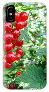 Redcurrant Berries IPhone Case