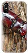 Reddish-brown Stag Beetle - Lucanus Capreolus IPhone Case