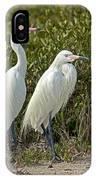Reddish Egret Egretta Rufescens Pair IPhone Case