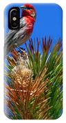 Redheaded Tree Topper IPhone Case