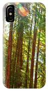 Redwood Wall Mural Panel 1 IPhone Case
