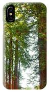Redwood Wall Mural Panel 2 IPhone Case