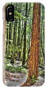 Redwoods 2 Big Basin IPhone Case
