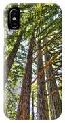 Redwoods 3 Big Basin IPhone Case