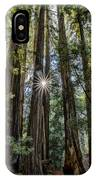Redwoods IPhone Case