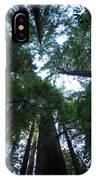 Redwoods II IPhone Case
