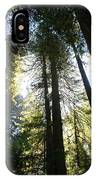 Redwoods IIII IPhone Case