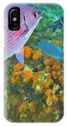 Reef Life IPhone Case