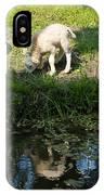 Reflected Cute Little Lamb IPhone Case