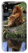 Reflecting Stripes IPhone Case
