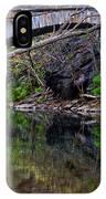 Reflecting While Fishing IPhone Case