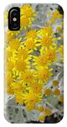 Reflection Of Sun IPhone Case