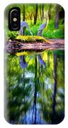 Reflections IPhone Case