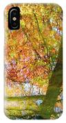 Reflections Of A Colorful Fall 001 IPhone Case