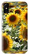 Reflections Of Sunflowers IPhone Case